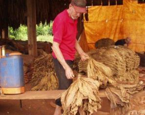 En marcha un programa para cuidar la selva y el agua en chacras tabacaleras